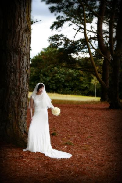 weddings0013