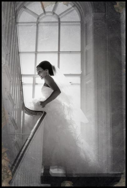 weddings0044